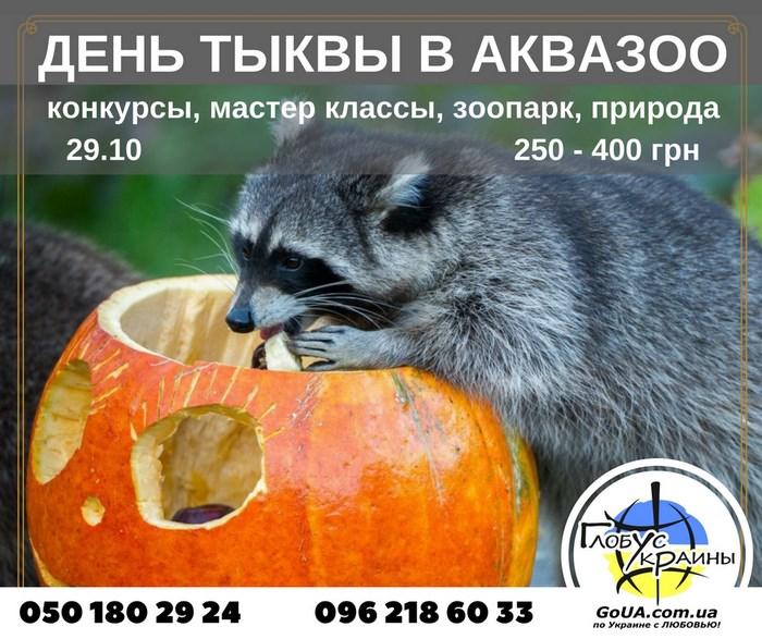 день тыквы в аквазоо из запорожья петрополь глобус украины енот