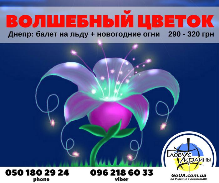 балет на льду днепр волшебный цветок глобус украины экскурсия из запорожья