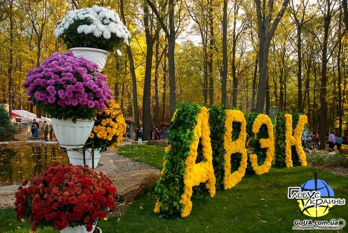 Харьков, бал хризантем