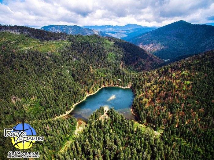 озеро синевир долина нарциссов экскурсия из запорожья западная украина глобус украины